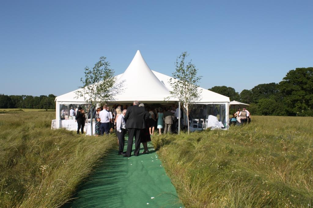 Chinese hat entrance with birch trees stood either side makes for a gorgeous marquee entrance
